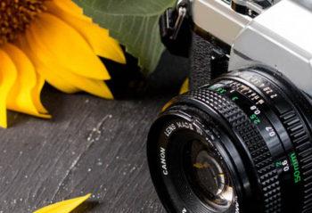 Советы начинающим фотолюбителям